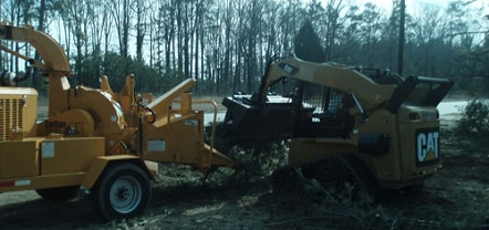 brush clearing bobcat